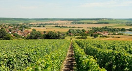 Rencontres en Champagne Ardenne